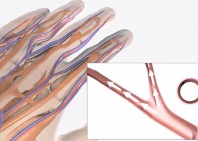 Hand-Arm Vibration Awareness